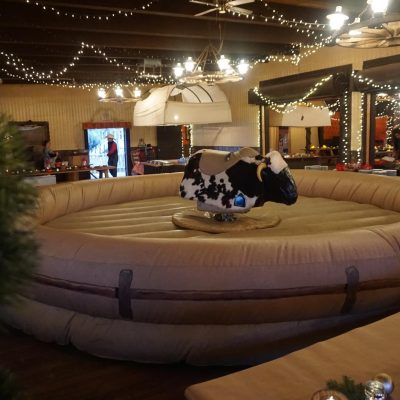 Mechanical Bull (Up to 4 Hours w/ Operator and Attendant)